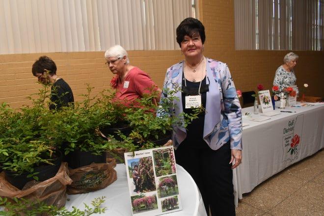 """Peggy Martin of Gonzales,for whom the rose is named, was the guest speaker at the Alexandria Garden Club meeting held at the Jewish Temple. She spoke on """"Old Roses and their Remarkable History"""" and on her namesake rose, the Peggy Martin"""