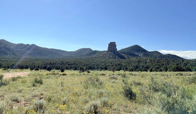 Sawtooth Mountain grazing allotment near Datil, NM.