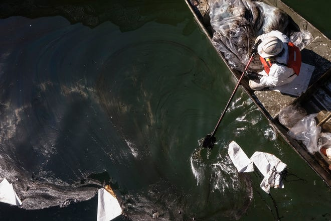 A worker in protective suit scoops oil from an inlet leading to the Wetlands Talbert Marsh after a spill in Huntington Beach, Calif., on Tuesday, Oct. 5, 2021.