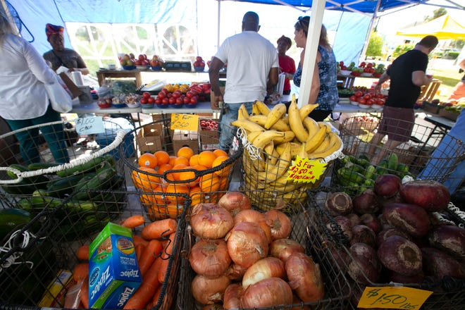 There are lots of fresh fruits and vegetables that can be included in your tailgating plans this football season.