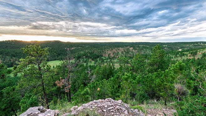 The 965-acre Argyle Canyon property is in the southwest portion of the state and adjoins the Black Hills National Forest to the northeast and expands a connected landscape between the forest, the 33,000-acre Wind Cave National Park and the 71,000-acre Custer State Park.