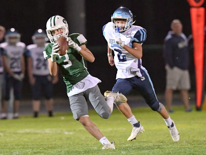 Dolphins receiver Jaden Moore makes a catch for a touchdown with Jordan Correia of Seekonk in pursuit.