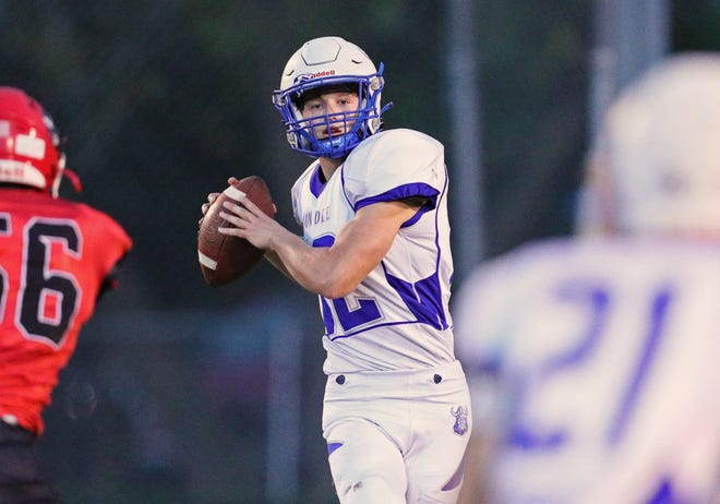 Dundee quarterback Carson Irwin looks for a receiver during a 35-0 loss to Clinton Friday night.
