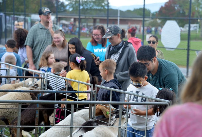 Families feed several goats as part of the petting zoo at Saturday's Harvest Hoedown held at Fairgrounds Park in Hagerstown. There were also ducks and a rabbit, and pony rides available for children.