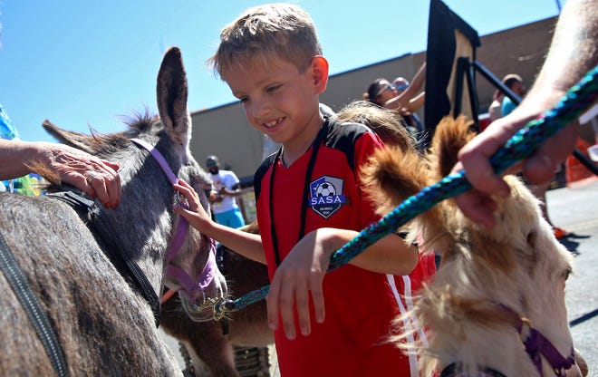 Brody Verfurth plays with a group of donkeys at the Craft Brew Fest in downtown San Angelo on Saturday, Oct. 9, 2021. A portion of the proceeds from the festival went to support the Peaceful Valley Donkey Rescue organization.