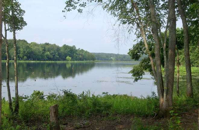 The Savannah River once had a lower level and many sandbars that were often used as the site for a duel. Why? Because rivers that straddled state linesmade legal jurisdiction less clear for illegal dueling.