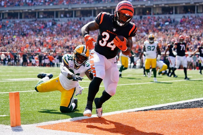 Cincinnati Bengals running back Samaje Perine scores on a 4-yard touchdown catch from Joe Burrow in the first quarter Sunday at Paul Brown Stadium.