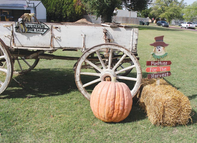 Yard display with a purpose catches attention on N. Main on Saturday in Pratt.