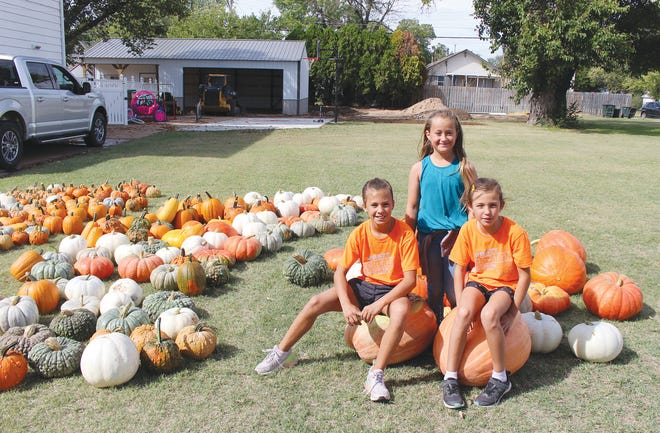 Kelsie and Kenzie Liggett (front) and their friend Piper Schmidt (blue shirt) are having a ball getting more than 100 pumpkins ready to sell Saturday on their front lawn on N. Main in Pratt.