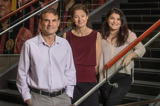From left, Professor Antonio Terracciano, Professor Angelina Sutin and Assistant Professor Martina Luchetti from the Florida State University College of Medicine. Their research showed an association between a sense of purpose in life and more vivid, coherent and accessible memories, qualities that are part of what's known as phenomenology.