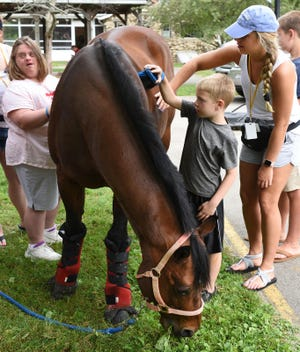 Here, children tend to a horse at Holiday Camp, an activity camp for children and adults with disabilities.
