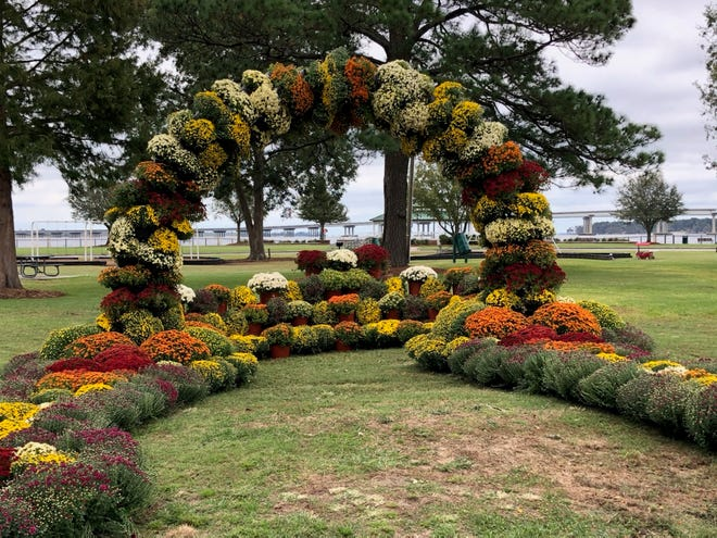The Mum arch in Union Point Park