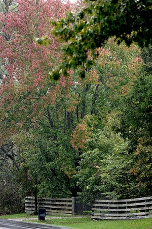 Fall colors are beginning to show on some trees along Route M near Sapp south of Columbia. Colors change in leaves when days become shorter and nights are longer, according to David Trinklein, horticulturist with the University of Missouri Extension.