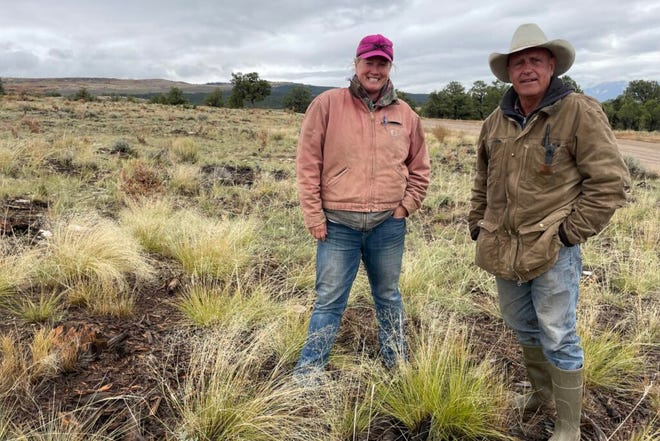 BLM rangeland specialist Kristy Wallner and rancher Pat Luark check out the grass on Luark's BLM grazing allotment on Sept. 29, 2021.