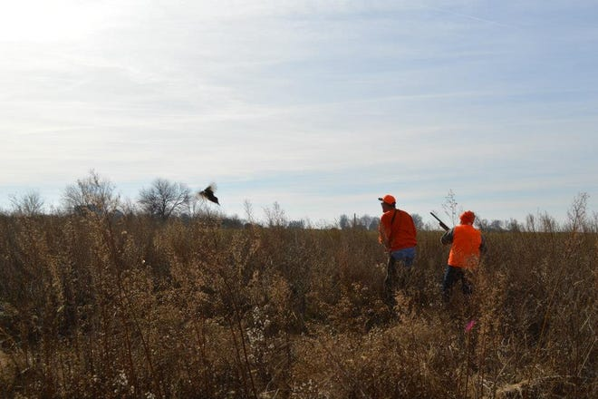 In a dated photo from 2014 members of the Logan County Pheasants Forever sponsor a pheasant hunt near Chestnut.