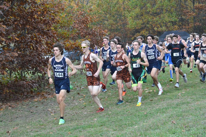 Sault High's Cody Aldridge leads early in Monday's SAC III race at Rudyard. Aldridge won all three SAC meets and the Blue Devils won the boy and girls team titles.