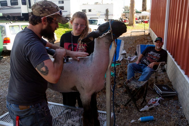 Austin Hurst (left), of Sugar Grove, helps his sister Brooke Hurst, 11, sheer her market lamb as they prepare for the Market Lamb Show at the Fairfield County Fair in Lancaster, Ohio on October 12, 2021.