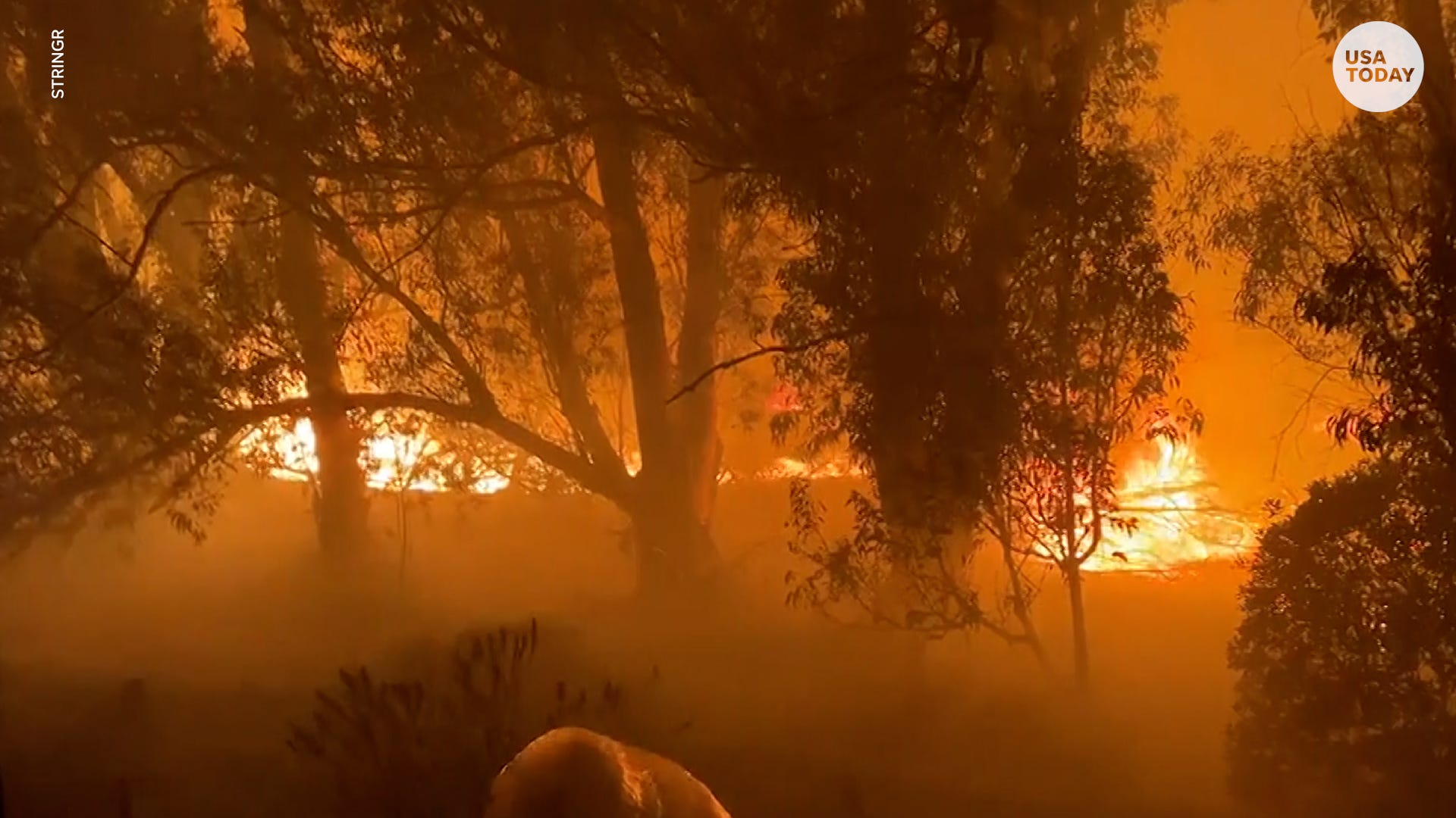 latest news Alisal fire breaks out in California causing evacuations, road closures