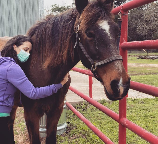 HorseLink offers equine therapy on a 22-acre ranch  along Texas 21 in Bastrop that houses a dozen horses.