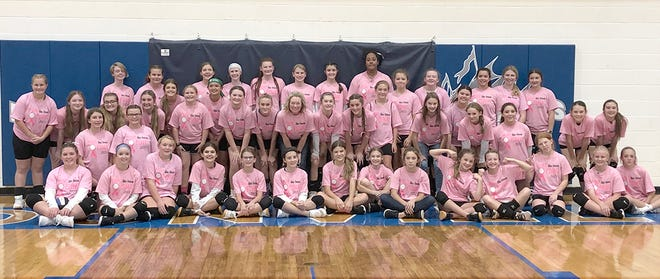 """Ss. Peter & Paul and LSE volleyball players pose for a group picture during the """"Pink Out"""" game Wednesday night at the Windsor gymnasium at Boonville High School."""