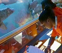 Going to school in a museum: Does learning have to happen in a school?