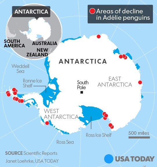 Penguin Map Of The World.Penguins Losing Habitat In Antarctica Could Be Decimated By 2099