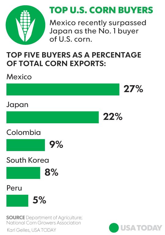 Trade corn options