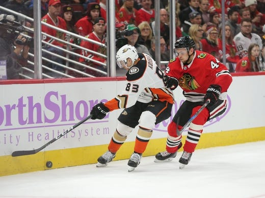 Nov 27, 2017; Chicago, IL, USA; Anaheim Ducks center Kalle Kossila (83) and Chicago Blackhawks defenseman Jan Rutta (44) fight for the puck during the second period at the United Center. Mandatory Credit: Dennis Wierzbicki-USA TODAY Sports