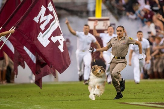 Sep 8, 2018; College Station, TX, USA; Texas A&M Aggies mascot Reveille runs on to the field before the game between the Texas A&M Aggies and the Clemson Tigers at Kyle Field. Mandatory Credit: Jerome Miron-USA TODAY Sports
