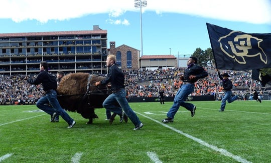 Oct 27, 2018; Boulder, CO, USA; Colorado Buffaloes mascot Ralphie is run onto Folsom Field before the game against the Oregon State Beavers. Mandatory Credit: Ron Chenoy-USA TODAY Sports