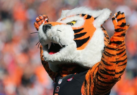 Oct 11, 2015; Cincinnati, OH, USA; The Cincinnati Bengals mascot Who Dey reacts against the Seattle Seahawks at Paul Brown Stadium. The Bengals won 27-24. Mandatory Credit: Aaron Doster-USA TODAY Sports
