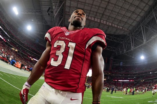 Nov 13, 2016; Glendale, AZ, USA;  Arizona Cardinals running back David Johnson (31) looks on after beating the San Francisco 49ers 23-20 at University of Phoenix Stadium. Mandatory Credit: Matt Kartozian-USA TODAY Sports