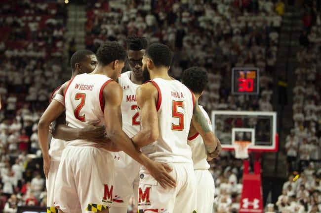 Maryland at Michigan:  1/19/21 College Basketball Picks and Predictions