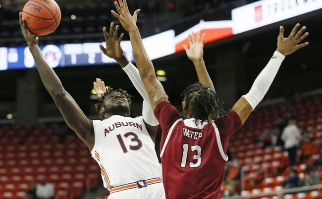 Troy at Georgia State: 2/19/21 College Basketball Picks and Predictions