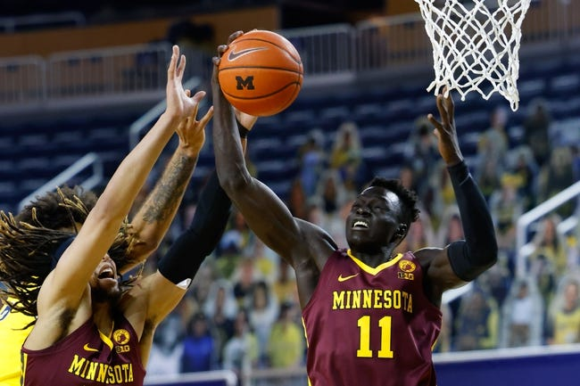 Michigan at Minnesota: 1/16/21 College Basketball Picks and Prediction