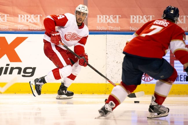 Detroit Red Wings vs Florida Panthers NHL Picks, Odds, Predictions 2/19/21