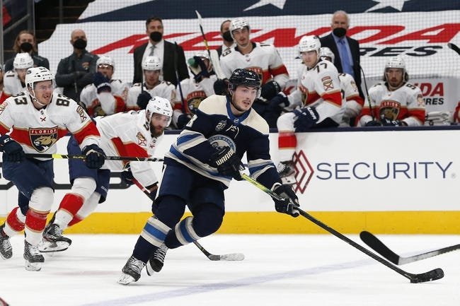 Columbus Blue Jackets vs Florida Panthers NHL Picks, Odds, Predictions 3/11/21