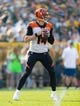 Sep 24, 2017; Green Bay, WI, USA; Cincinnati Bengals quarterback Andy Dalton (14) during the game against the Green Bay Packers at Lambeau Field. Mandatory Credit: Jeff Hanisch-USA TODAY Sports