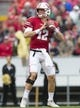 Oct 14, 2017; Madison, WI, USA; Wisconsin Badgers quarterback Alex Hornibrook (12) looks to pass during the first quarter against the Purdue Boilermakers at Camp Randall Stadium. Mandatory Credit: Jeff Hanisch-USA TODAY Sports