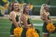 Sep 1, 2018; Waco, TX, USA; A Baylor Bears cheerleader cheers for her team during the game between the Baylor Bears and the Abilene Christian Wildcats at McLane Stadium. Mandatory Credit: Jerome Miron-USA TODAY Sports
