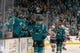 Oct 20, 2018; San Jose, CA, USA; San Jose Sharks right wing Timo Meier (28) is congratulated by teammates after scoring during the first period against the New York Islanders at SAP Center at San Jose. Mandatory Credit: Neville E. Guard-USA TODAY Sports