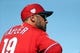 Mar 22, 2019; Tampa, FL, USA; Philadelphia Phillies manager Gabe Kapler (19) looks on from the dugout prior to the game against the New York Yankees at George M. Steinbrenner Field. Mandatory Credit: Kim Klement-USA TODAY Sports