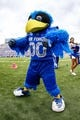 Sep 5, 2015; Colorado Springs, CO, USA; Air Force Falcons mascot The Bird poses for a picture in the third quarter against the Morgan State Bears at Falcon Stadium. The Falcons defeated the Bears 63-7. Mandatory Credit: Isaiah J. Downing-USA TODAY Sports