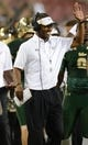 Sep 5, 2015; Tampa, FL, USA; South Florida Bulls head coach Willie Taggart  celebrates a score in the second half  against the Florida A & M Rattlers at Raymond James Stadium. The South Florida Bulls defeated the Florida A & M Rattlers 51-3. Mandatory Credit: Jonathan Dyer-USA TODAY Sports