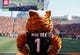 Oct 11, 2015; Cincinnati, OH, USA; The Cincinnati Bengals mascot Who Dey looks on against the Seattle Seahawks at Paul Brown Stadium. The Bengals won 27-24. Mandatory Credit: Aaron Doster-USA TODAY Sports