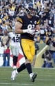 Nov 8, 2015; Pittsburgh, PA, USA; Pittsburgh Steelers tight end Jesse James (81) scores a four yard touchdown against the Oakland Raiders during the fourth quarter at Heinz Field. The Steelers won 38-35. Mandatory Credit: Charles LeClaire-USA TODAY Sports